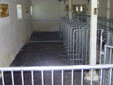 koca rekesz rácsos szerkezetű acél fal horganyzott kapuval, 110 cm magas